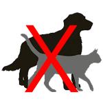repulsif chien et chat