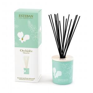 Bouquet parfumé décoratif et rechargeable ORCHIDEE BLANCHE (Esteban)