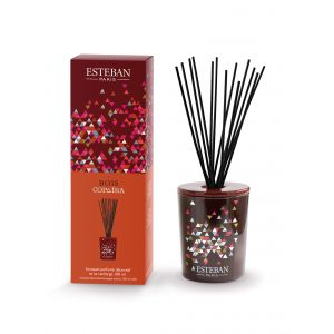 Bouquet parfumé décoratif et rechargeable BOIS COPAÏBA (Esteban)