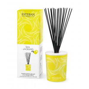 Bouquet parfumé décoratif et rechargeable TERRE D'AGRUMES (Esteban)