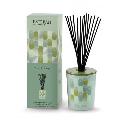Bouquet parfumé décoratif et rechargeable SOUS L'OLIVIER (Esteban)
