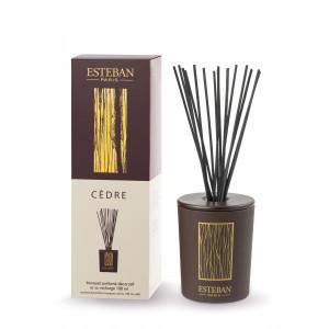 Bouquet parfumé décoratif et rechargeable CEDRE (Esteban)