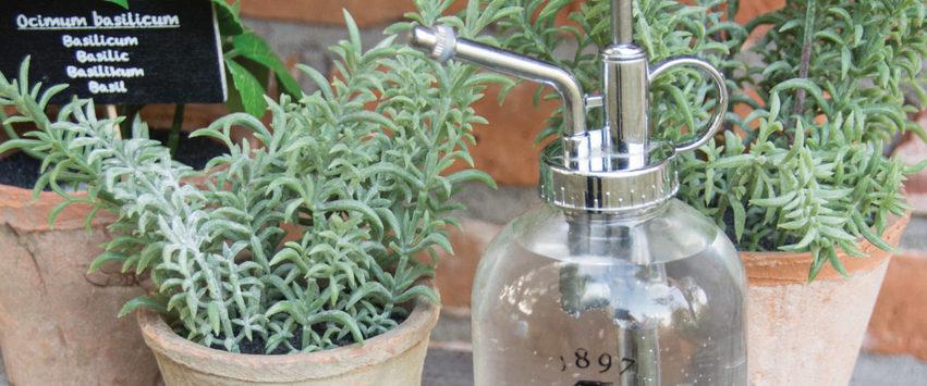 CHEZ UGO ET LEA nature et végétal esschert design pulvérisateur verre garden 5