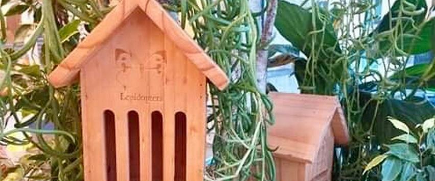 CHEZ UGO ET LEA nature et végétal eschert design hotel insectes cabane 3