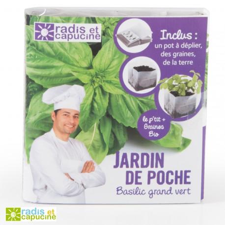 Jardin de poche basilic grand vert bio