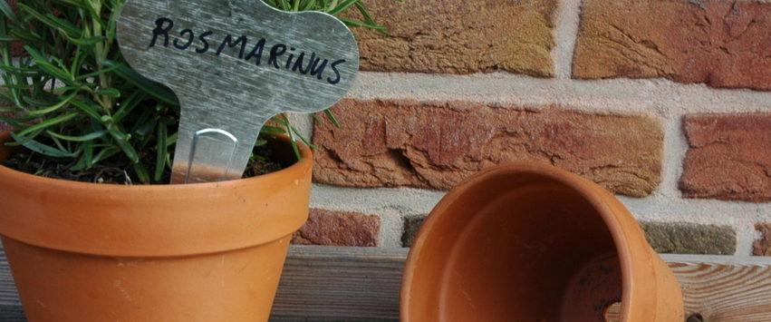 CHEZ UGO ET LEA nature et végétal esschert design marque plante