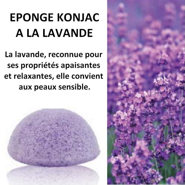 Eponge Konjac 100% naturelle à la lavande