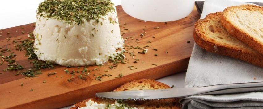 l atelier fromage de vache bio radis et capicine diy