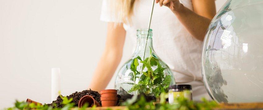 vase terrarium esschert design