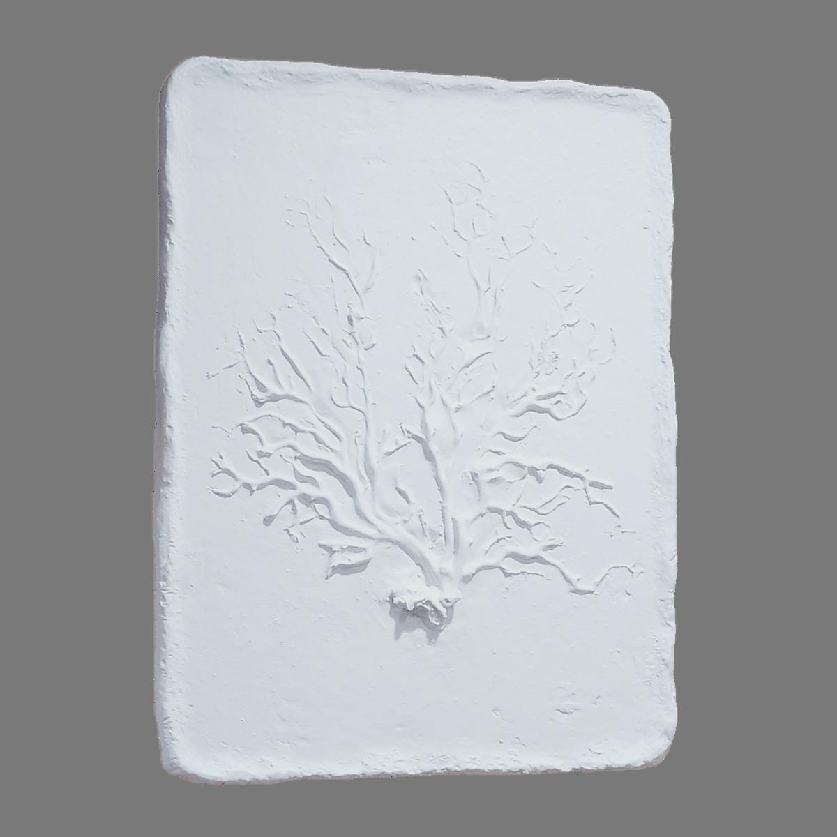 Buisson : tableau moulage en relief blanc