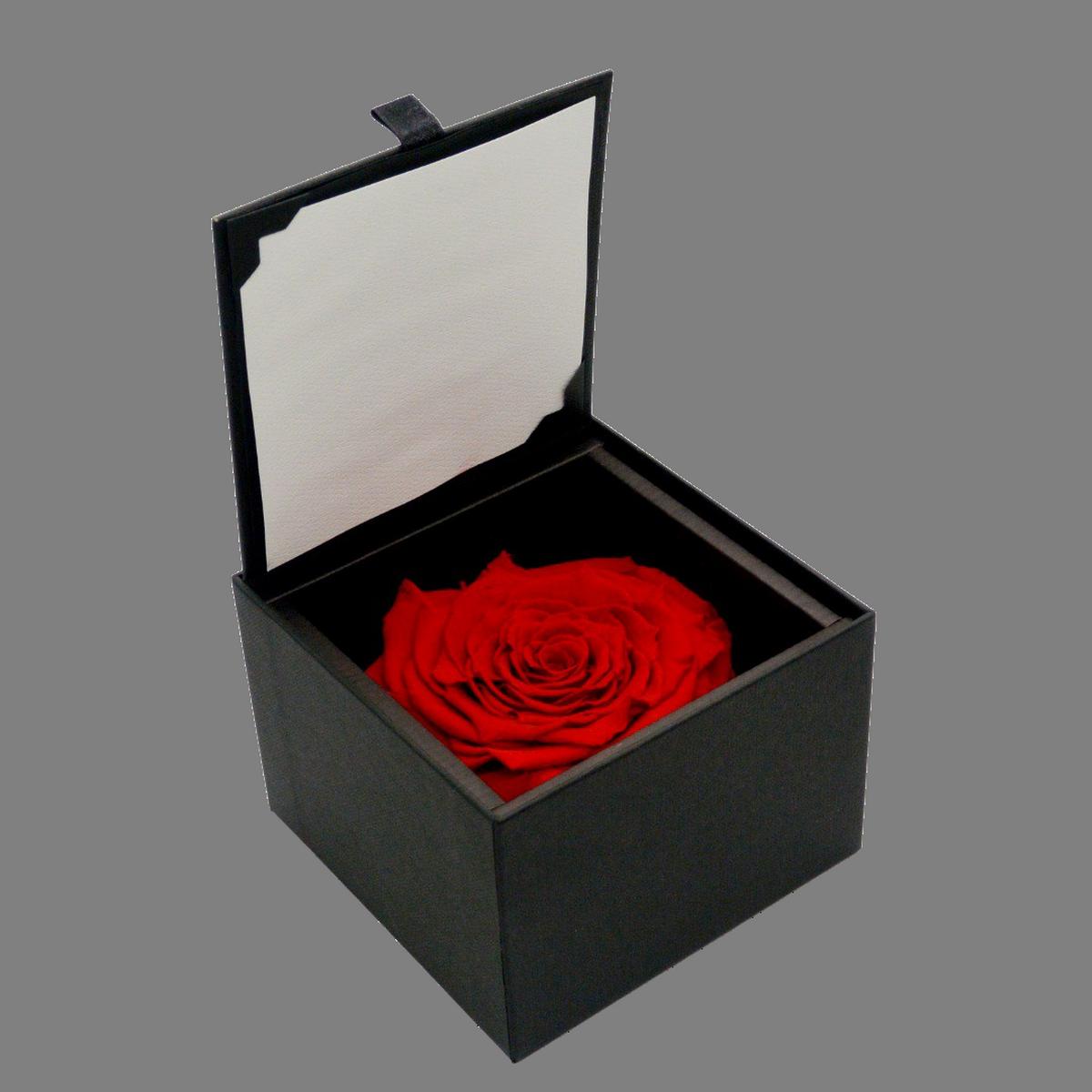 Rose éternelle rouge XL dans son écrin noir : la Bloominbox