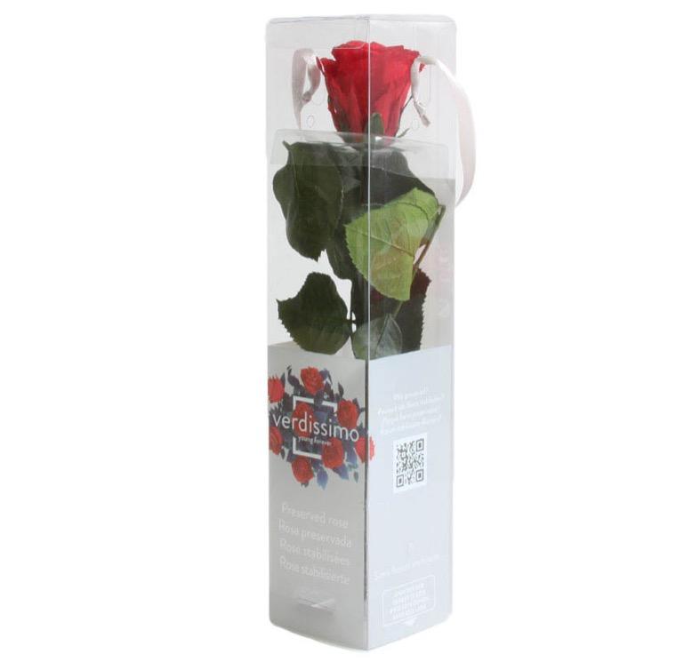 Rose éternelle rouge 25 cm