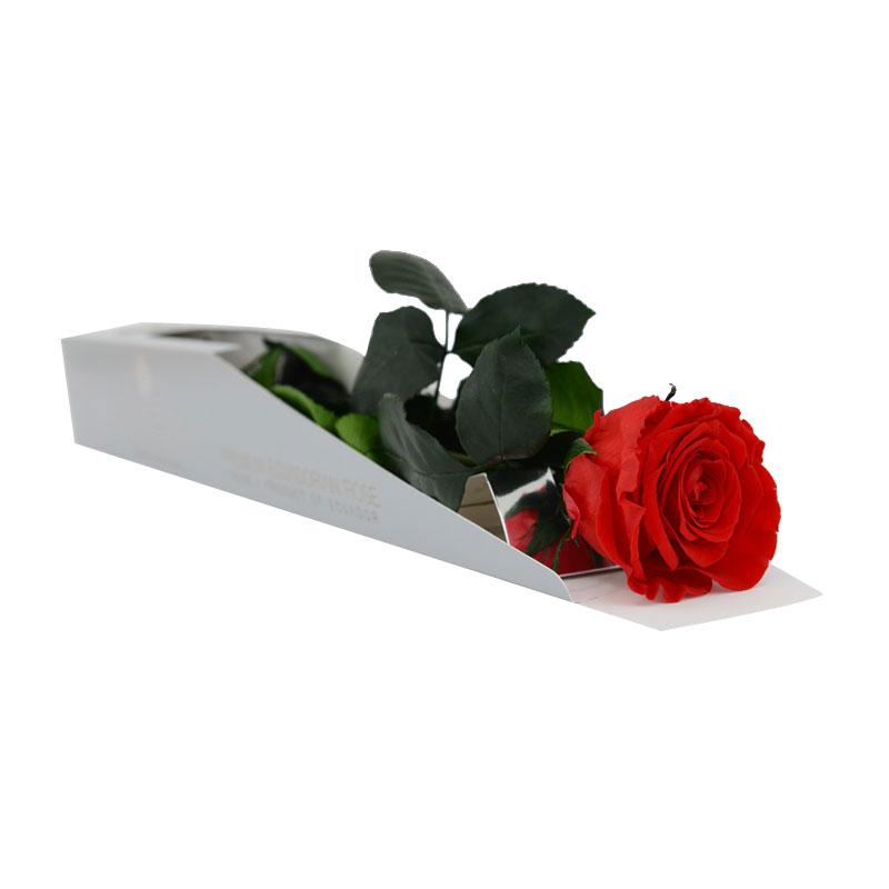 Rose éternelle rouge 55 cm