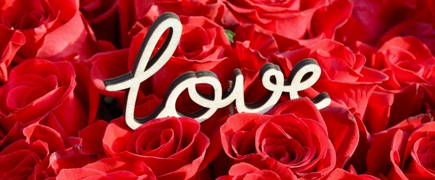 idee cadeau saint valentin chez ugo et lea rose eternelle rose rouge