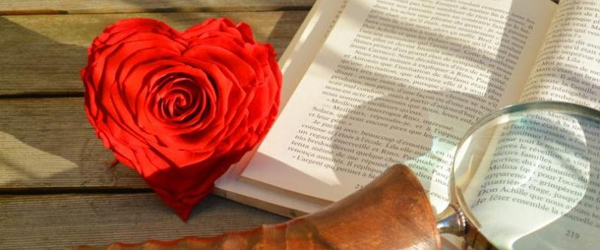 rose etrenelle en forme de coeur une idee cadeau saint valentin chez ugo et lea