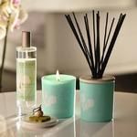 CHEZ UGO ET LEA lumière et senteur esteban bougie orchidée blanche 1