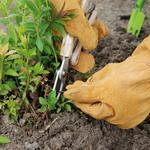 CHEZ UGO ET LEA nature et végétal esschert sécateur inoxydable 5