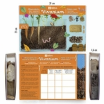 terrarium-visio-racines (5)