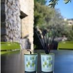 CHEZ UGO ET LEA lumière et senteur esteban bougie sous l olivier 2
