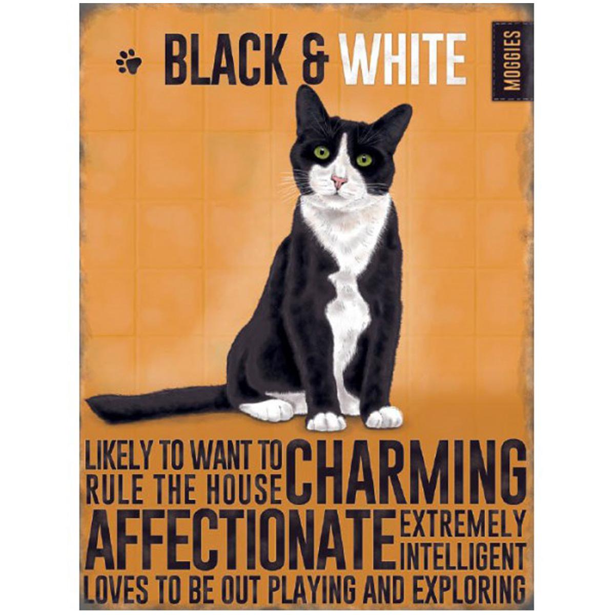 Magnet métal \'Chats\' orange noir blanc (Chat Noir & Blanc - Black and White) - 9x65 cm - [R1193]
