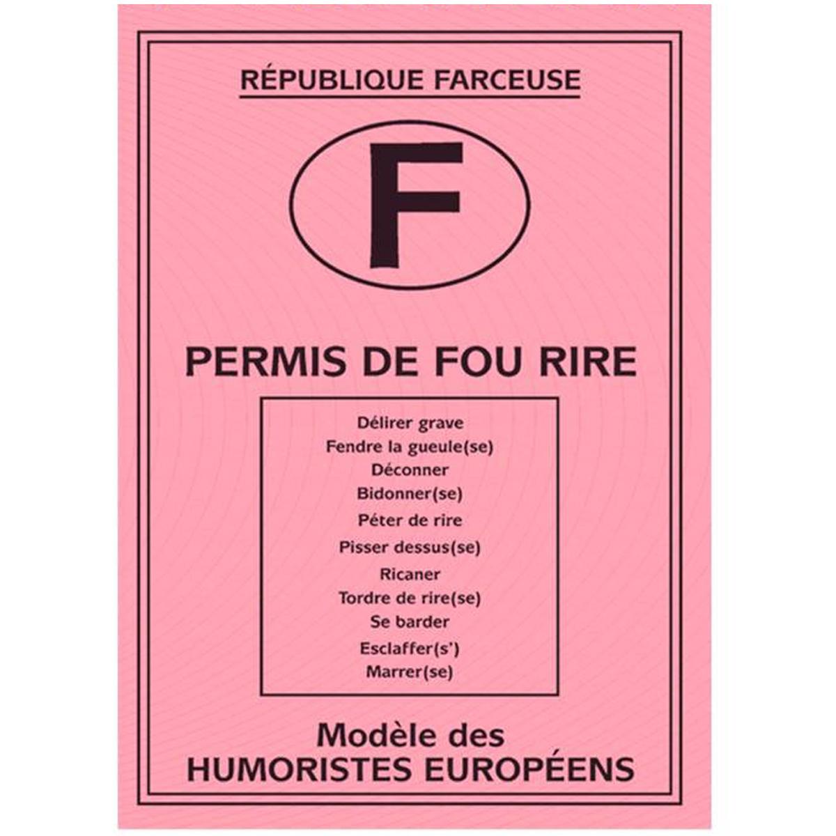 Carte spéciale \'Permis de fou rire\' - 205x145 cm - [H6978]