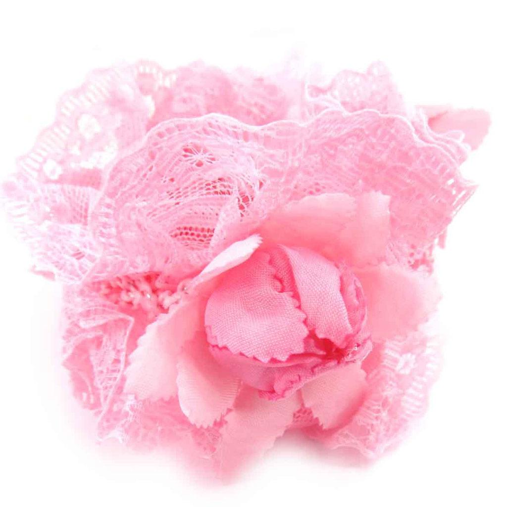 Chouchou \'Scarlett\' rose  - [J8965]