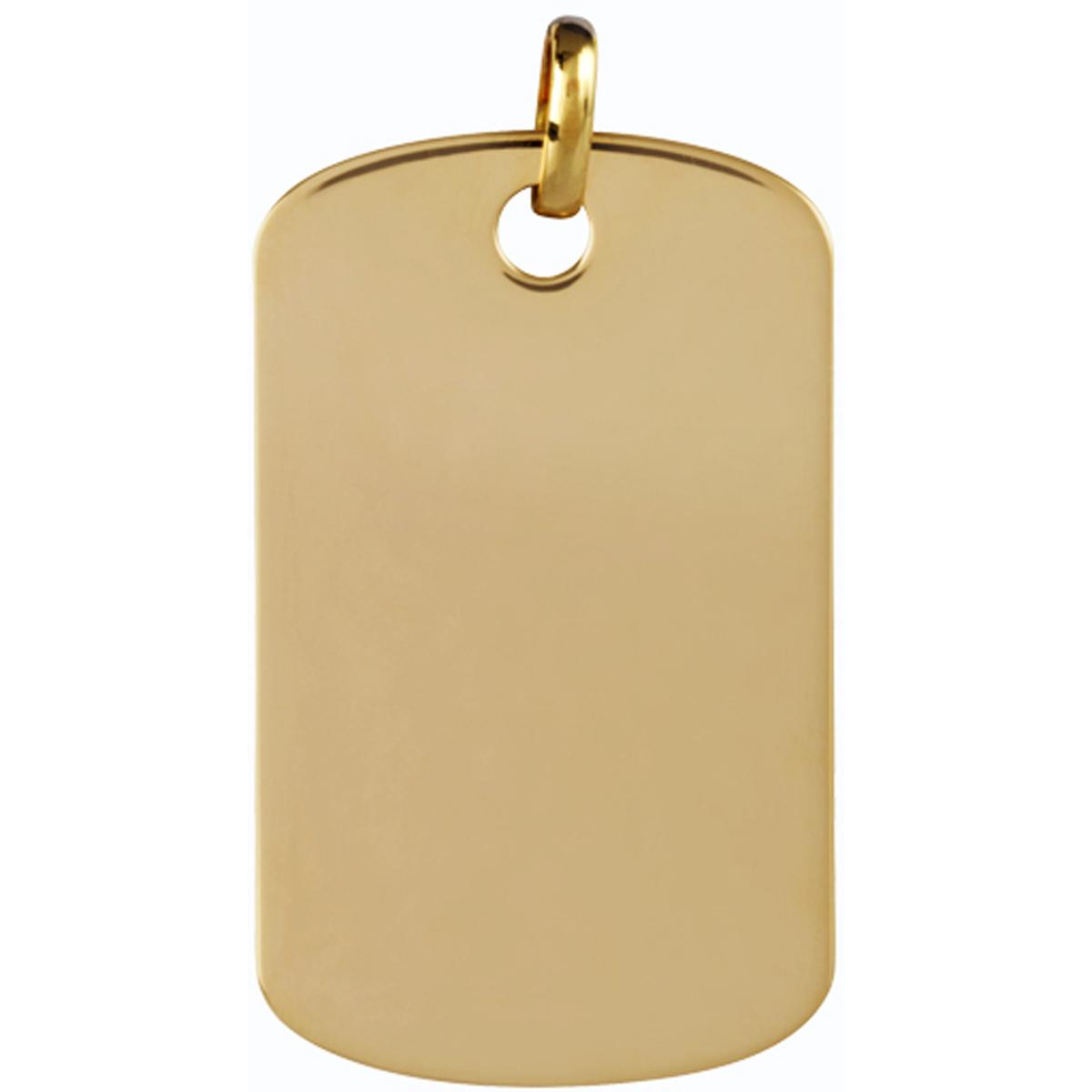 Médaille Plaqué Or \'Plaque Américaine\' (38x23 cm) - [L6134]