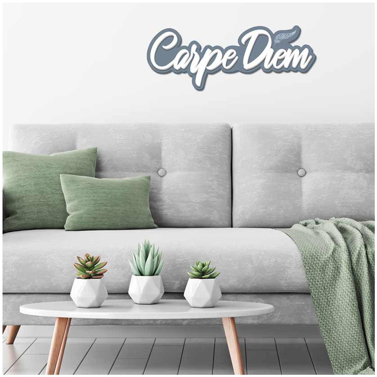 Mot Déco bois 3D \'Carpe Diem\' gris bleuté blanc - 45x12x1 cm - [Q7315]