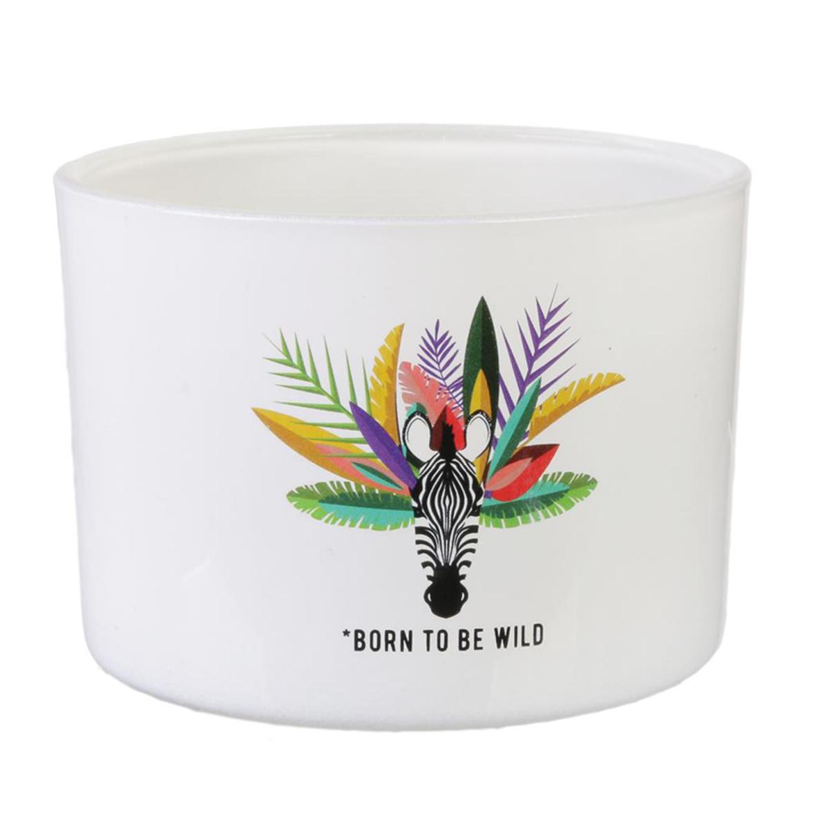 Bougie décorative \'Tropical\' blanc (Zèbre - Born to be wild) 3 mèches - 13x85 cm - [Q7708]