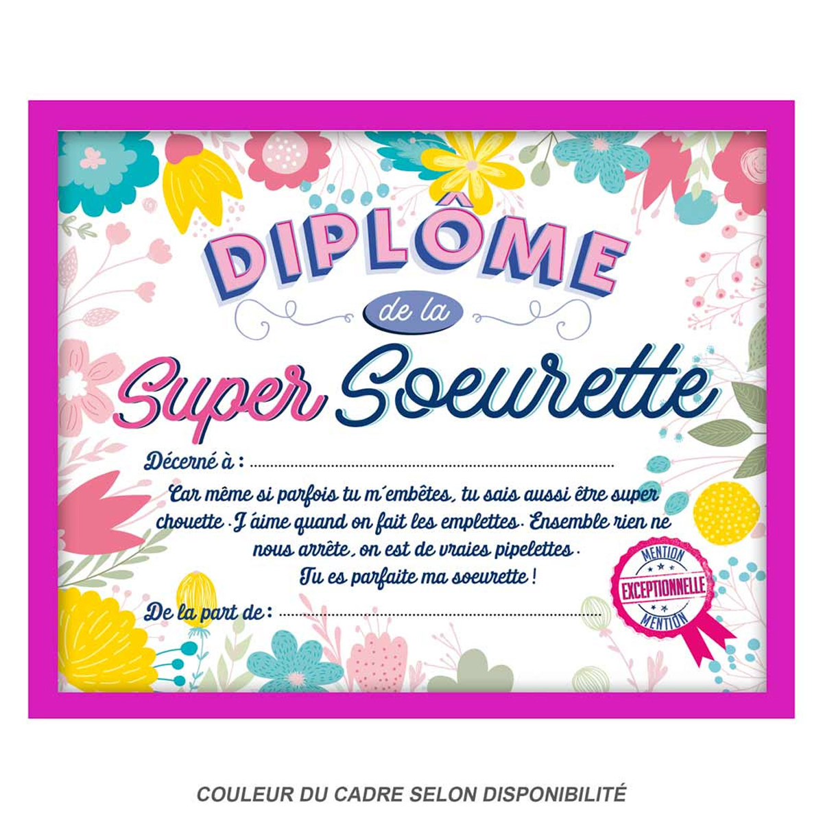 Cadre \'Diplôme de la Super Soeurette\' rose - 25x20x15 cm - [Q9597]