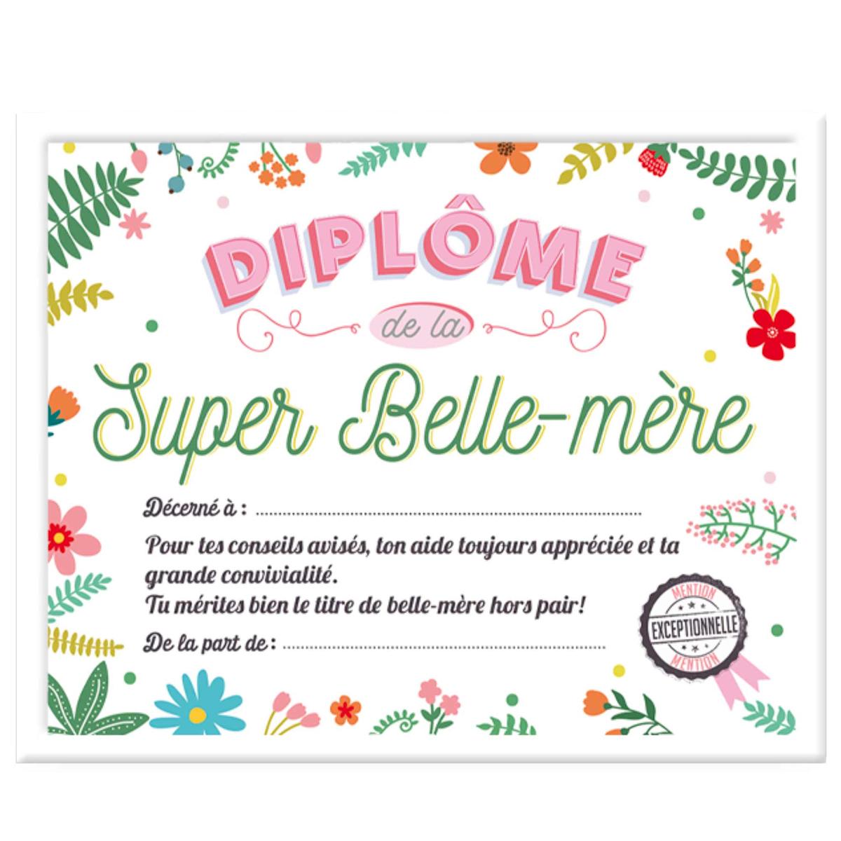 Cadre \'Diplôme de la Super Belle-mère\' multicolore - 25x20x15 cm - [A0386]