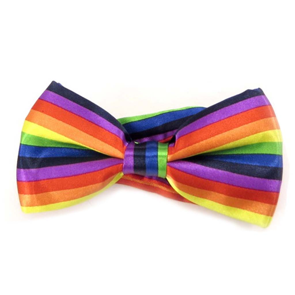 Noeud papillon \'Watson\' arc en ciel multicolore - 12x55 cm - [A0520]