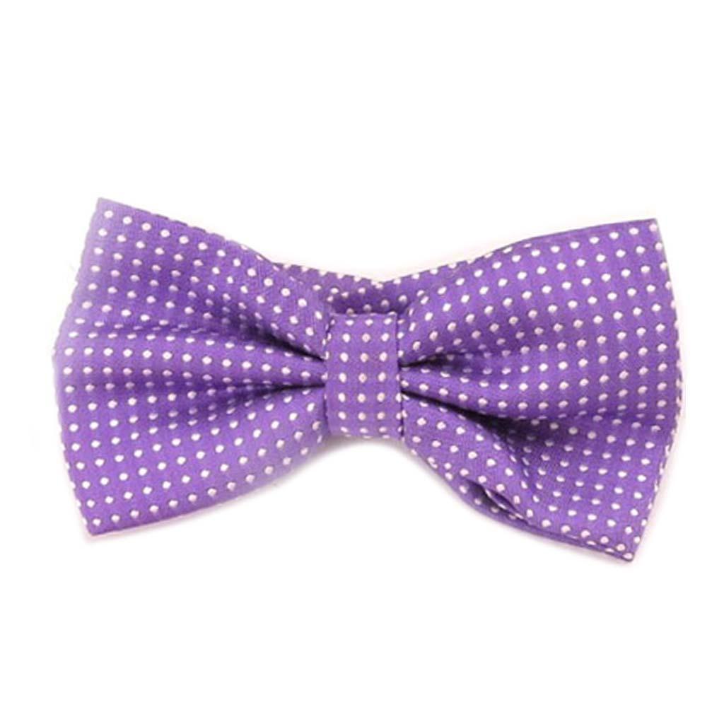 Noeud papillon \'Watson\' violet - 12x55 cm - [A0530]