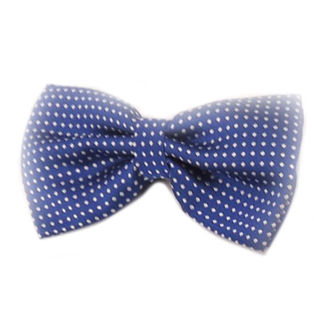 Noeud papillon \'Watson\' bleu - 12x55 cm - [A0535]