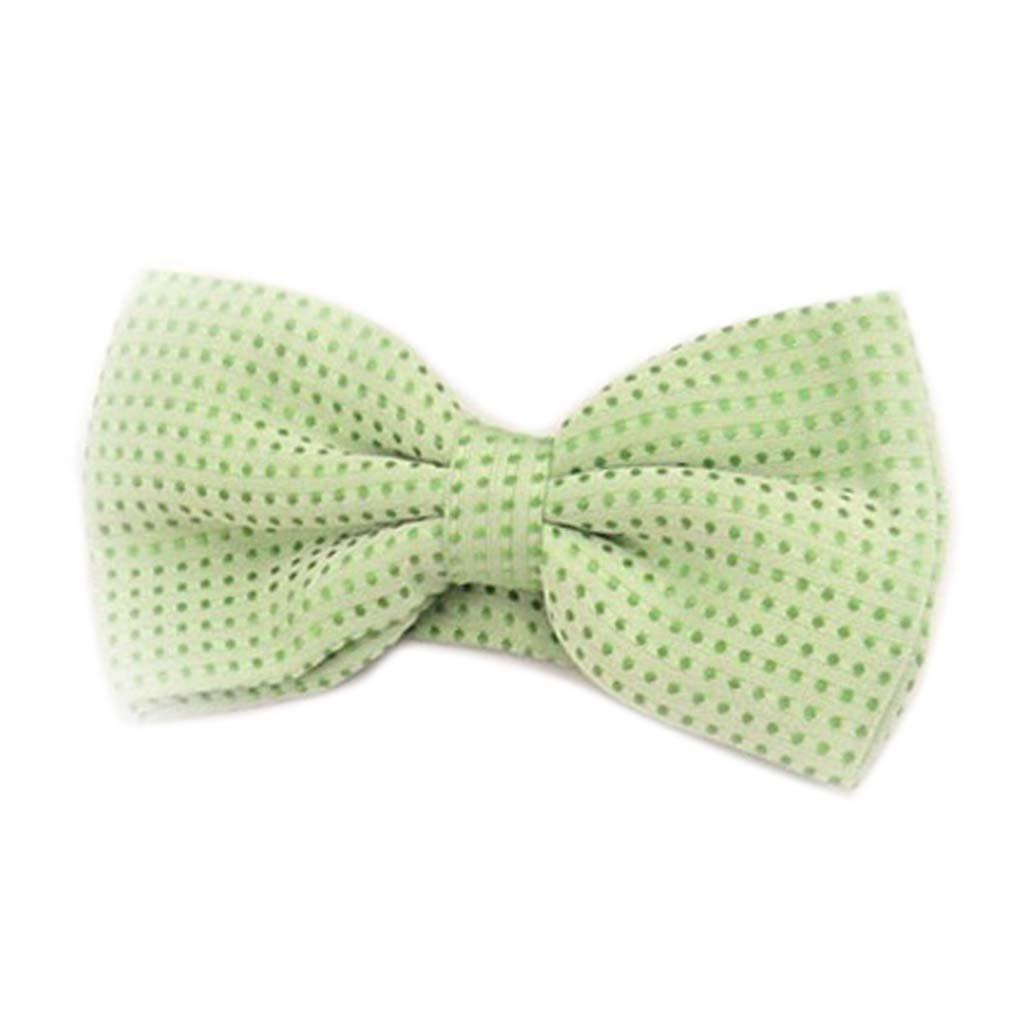 Noeud papillon \'Watson\' vert - 12x55 cm - [A0537]