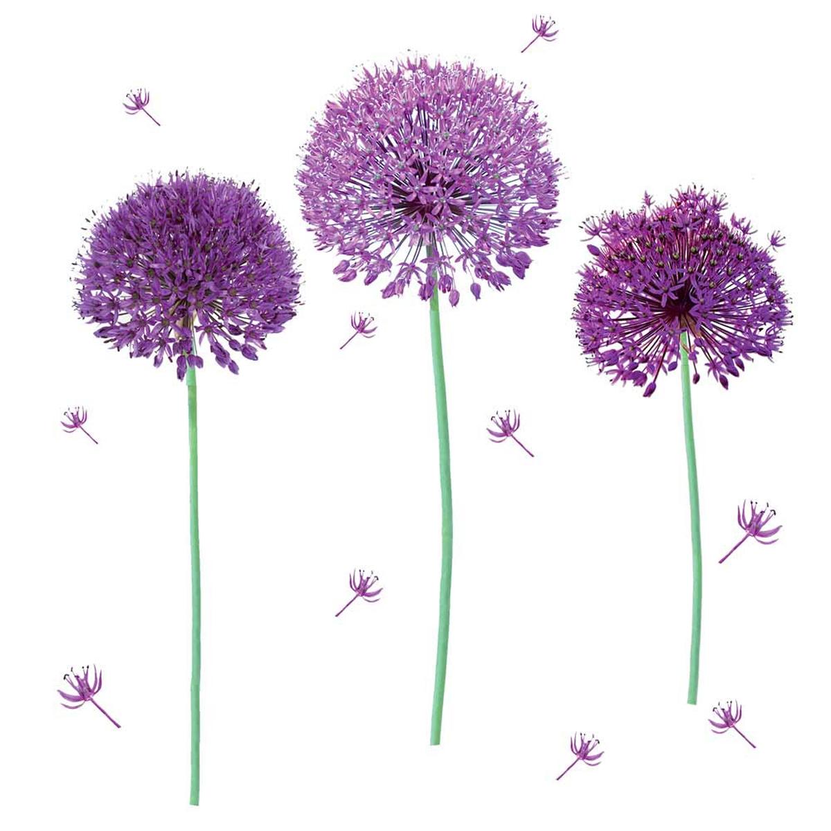 Planche de stickers \'Allium\' violet - 50x70 cm - [Q8273]