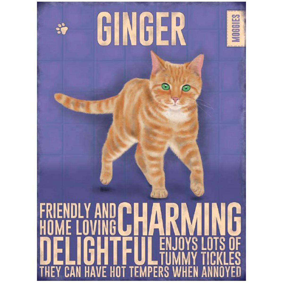 Magnet métal \'Chats\' violet orange (Chat Roux - Ginger) - 9x65 cm - [R1129]