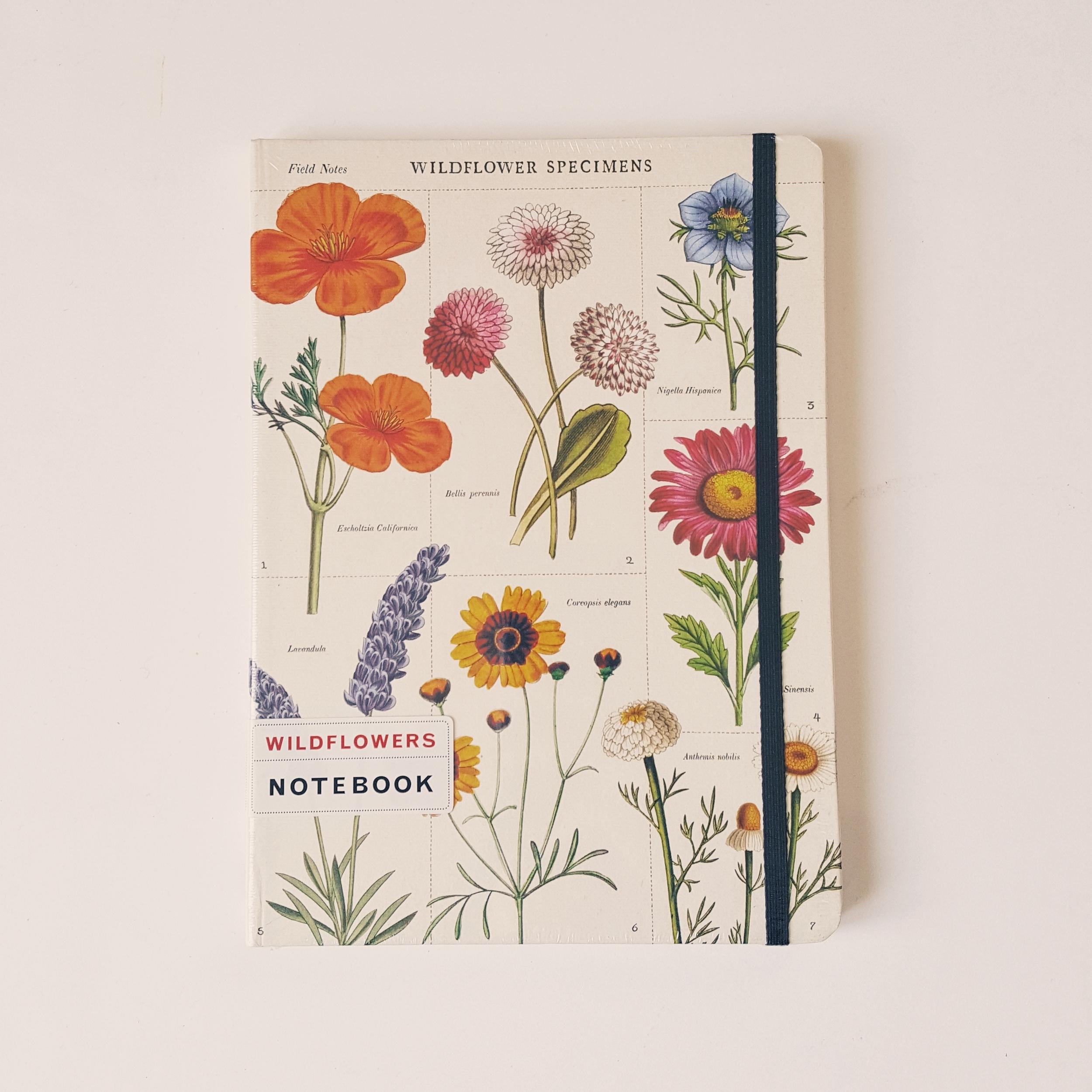 Carnet A5 fleurs sauvages