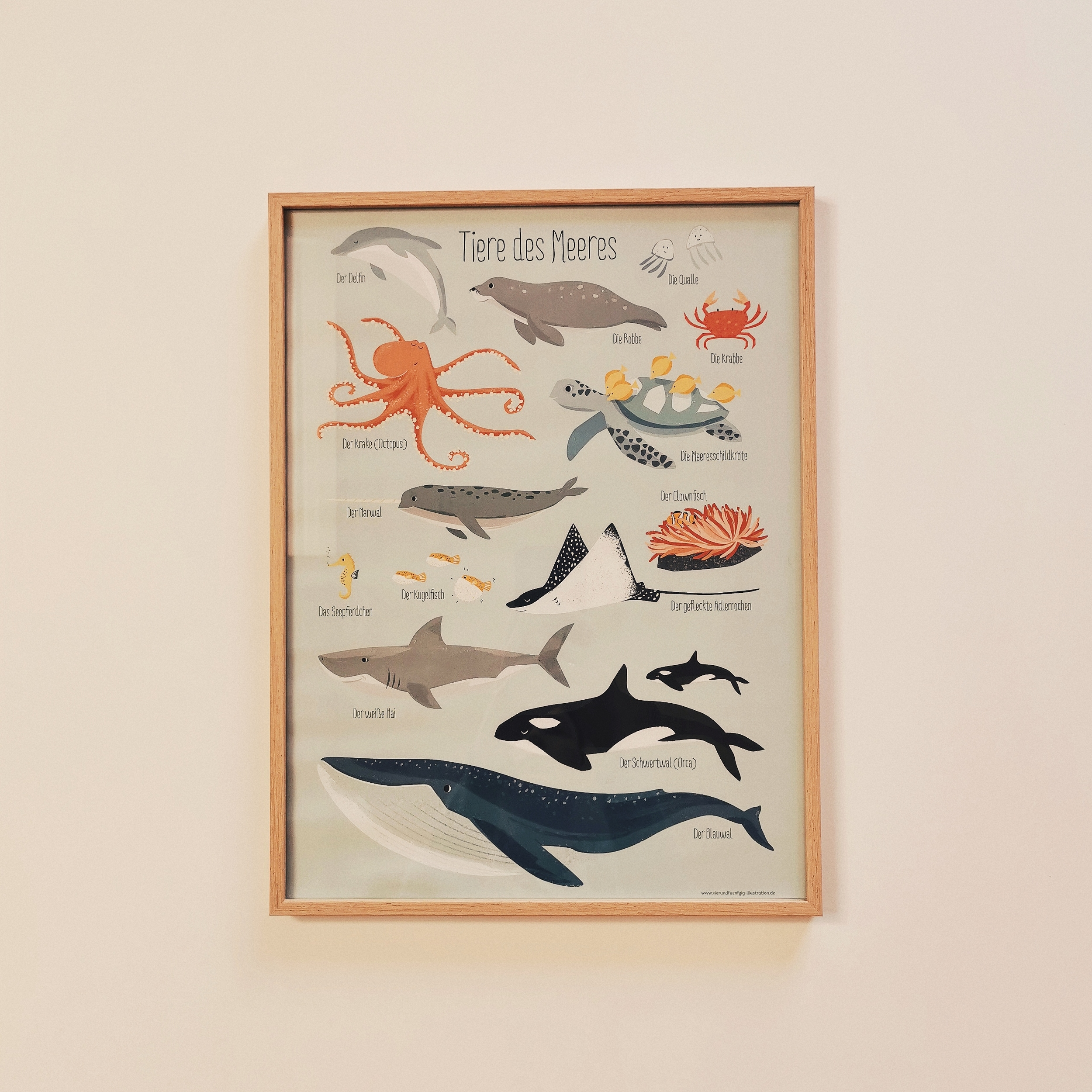 Affiche A3 animaux des mers