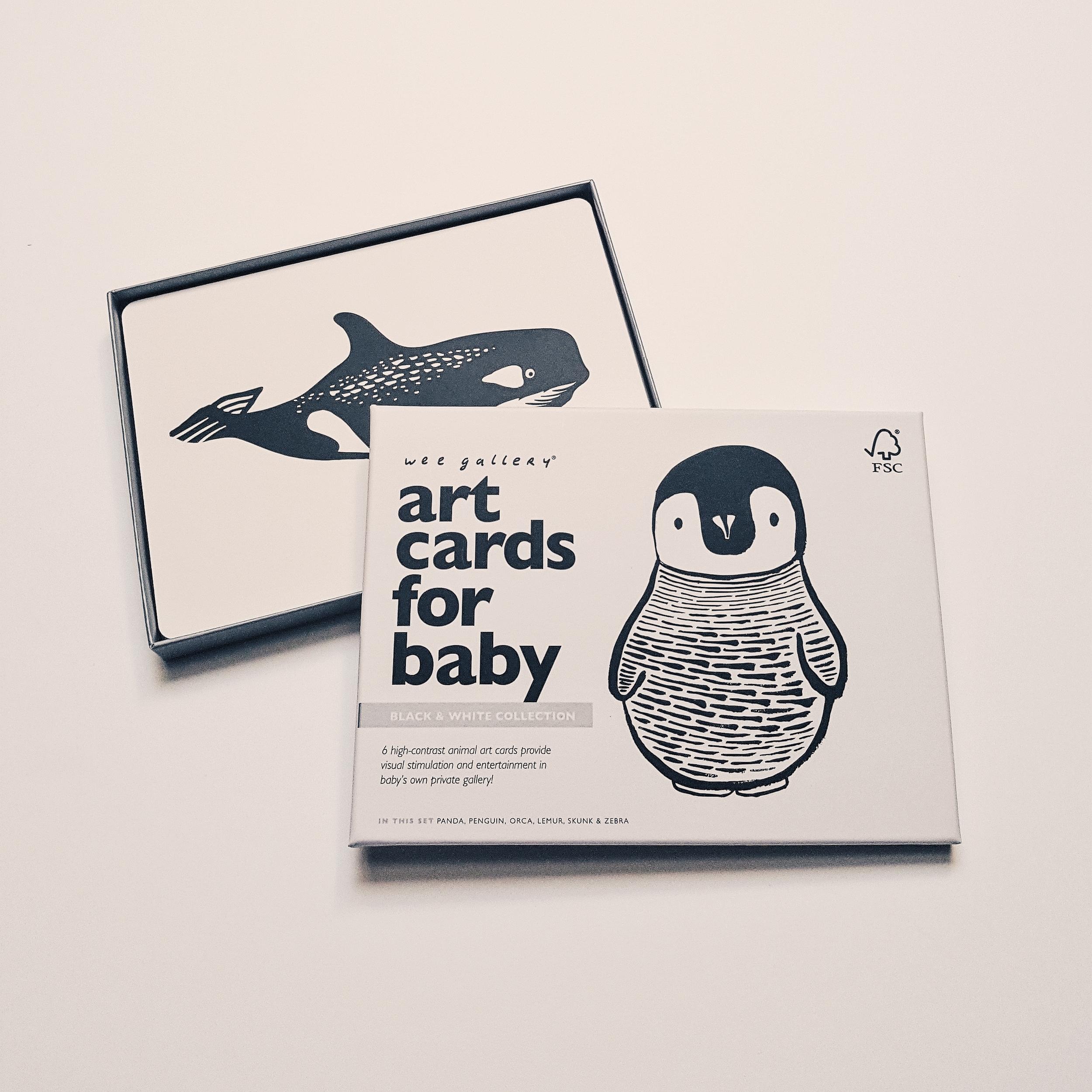 Cartes imagier noir et blanc pour bébé
