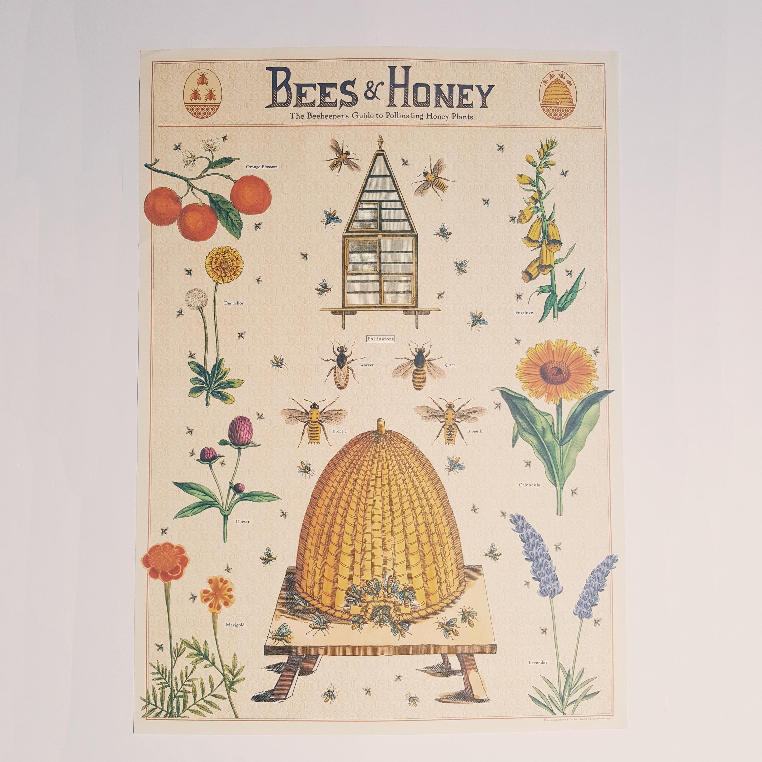 Affiche vintage Apiculture
