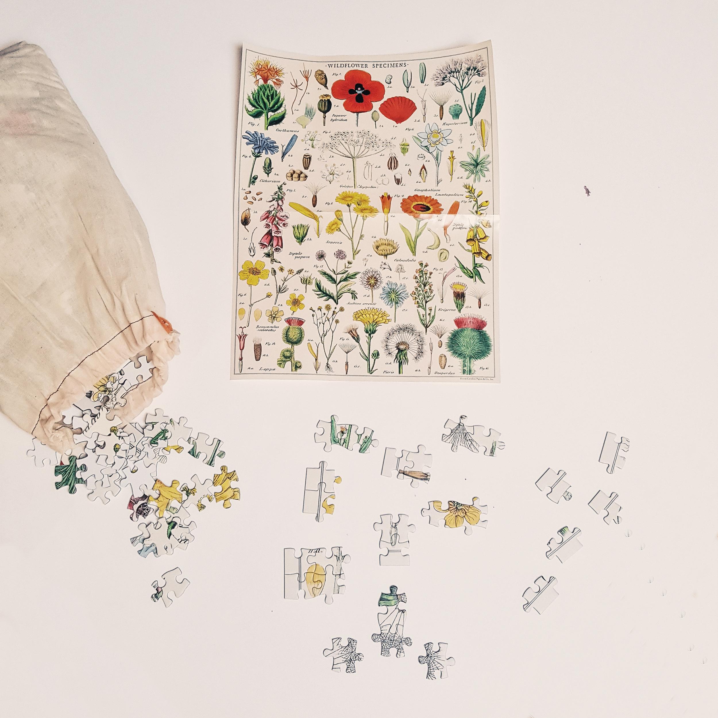 Puzzle 1000 pièces - fleurs sauvages