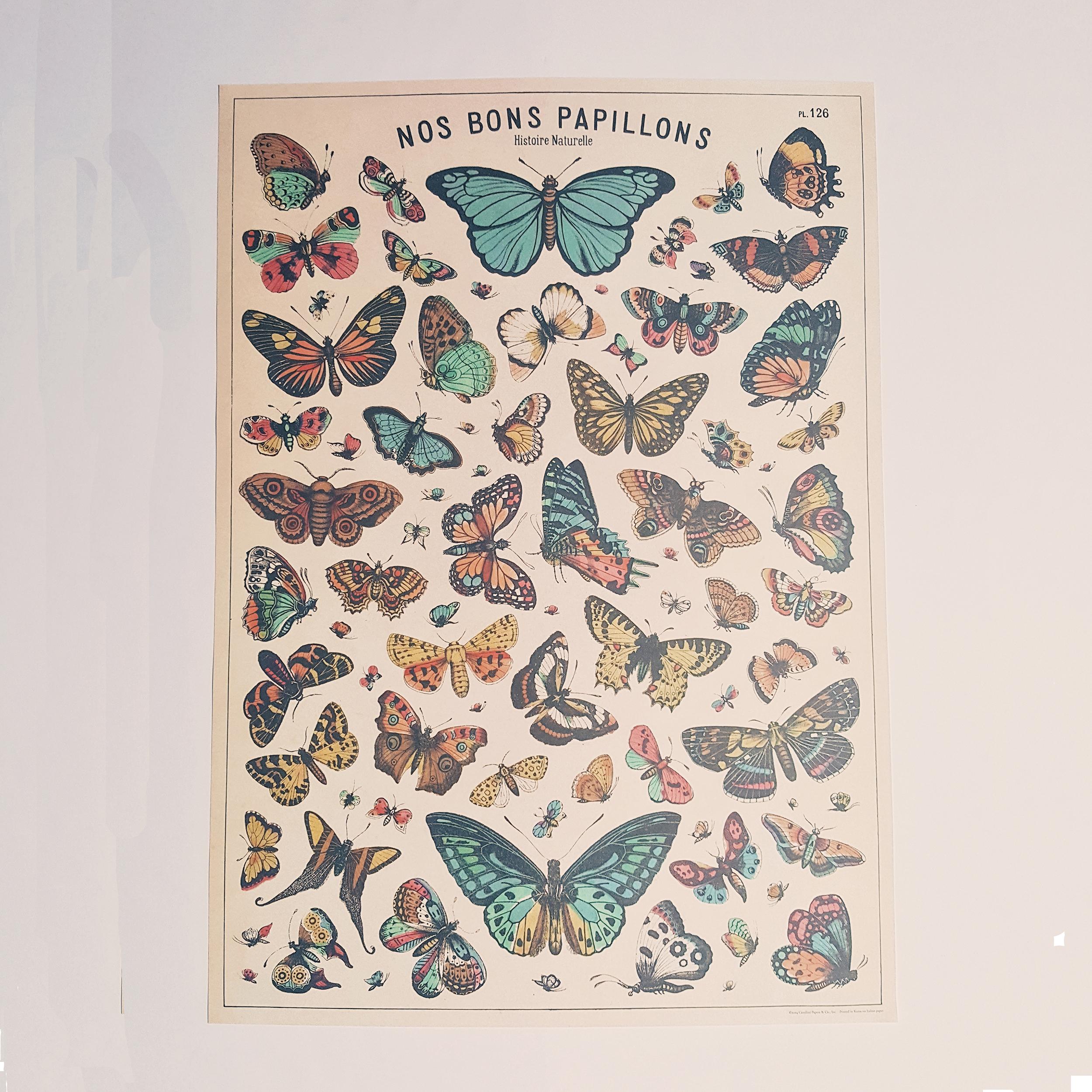Affiche vintage nos bons papillons
