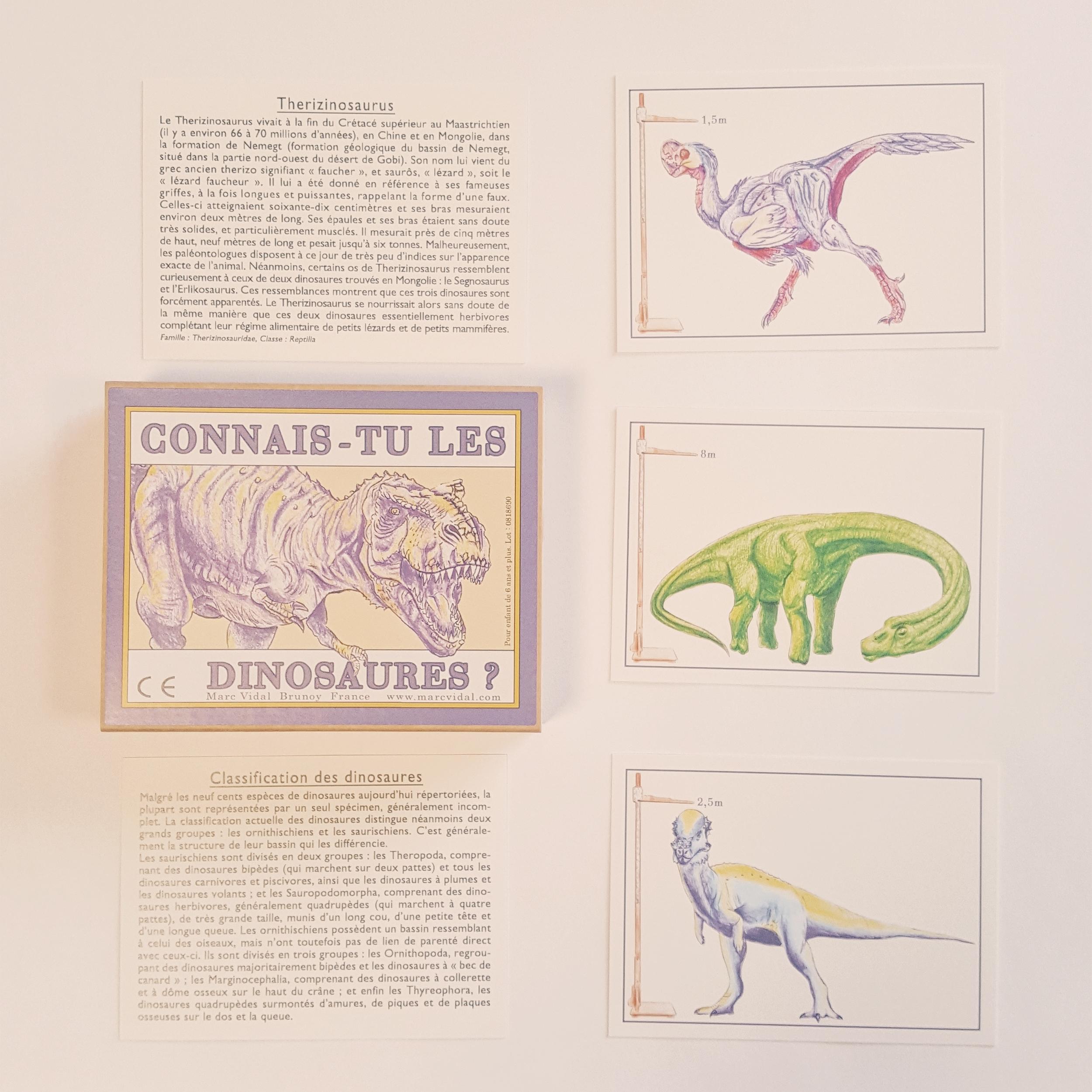 Cartes Connais-tu les dinosaures ?