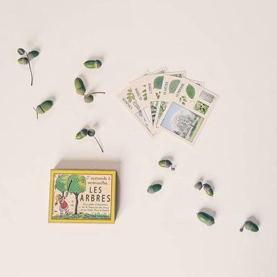 """Boîte de cartes éducatives """"j'apprends à reconnaître les arbres"""""""