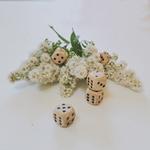 jeux de dés en famille