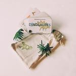 cartes de poche dinosaures