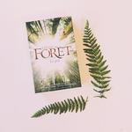 petit jeu 2 joueurs forêt nature