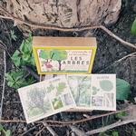 cartes de nomenclature arbres