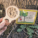 cartes dapprentissage des arbres